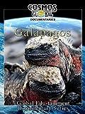 Cosmos Global Documentaries - Galapagos