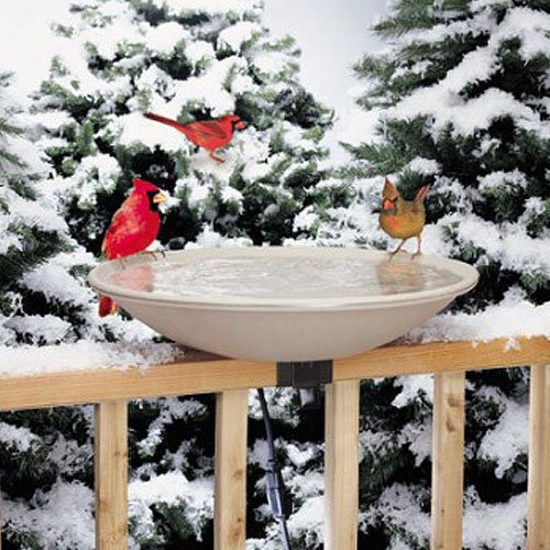 Allied Precision Industries (650) Heated Bird Bath with Mounting Bracket
