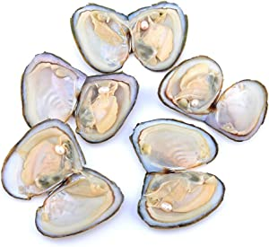 YVUYVJH 20 PCS 7-8mm Vacuum-Packed Pearl Mussels, Small Mussel Pearls, Random Colors