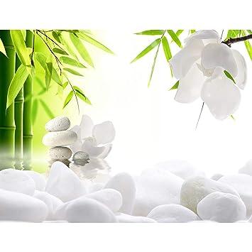 Fototapete Blumen Feng Shui 396 x 280 cm - Vlies Wand Tapete Wohnzimmer  Schlafzimmer Büro Flur Dekoration Wandbilder XXL Moderne Wanddeko - 100%  MADE ...