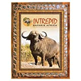 Wood-Framed Intrepid Safaris Africa Metal Sign: Travel Decor Wall Accent for kitchen on reclaimed, rustic wood