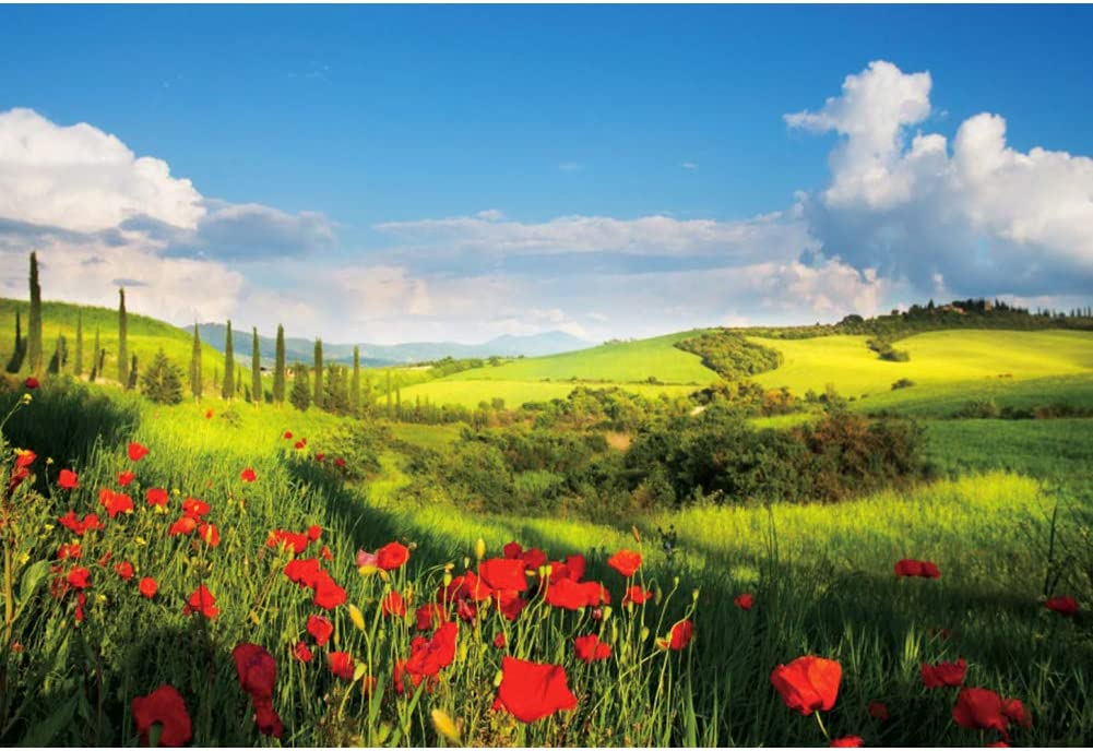 OERJU 8x6ft Spring Nature Meadow Backdrop Red Flowers Blue Sky White Clouds Landscape Photography Background Wedding Ceremony Decor Bridal Shower Banner Home Office Interior Vinyl Wallpaper