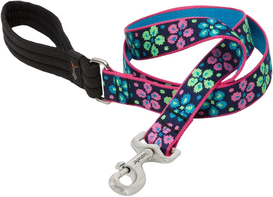"""LupinePet Originals 1"""" Flower Power 6-Foot Padded Handle Leash for Medium and Larger Dogs"""