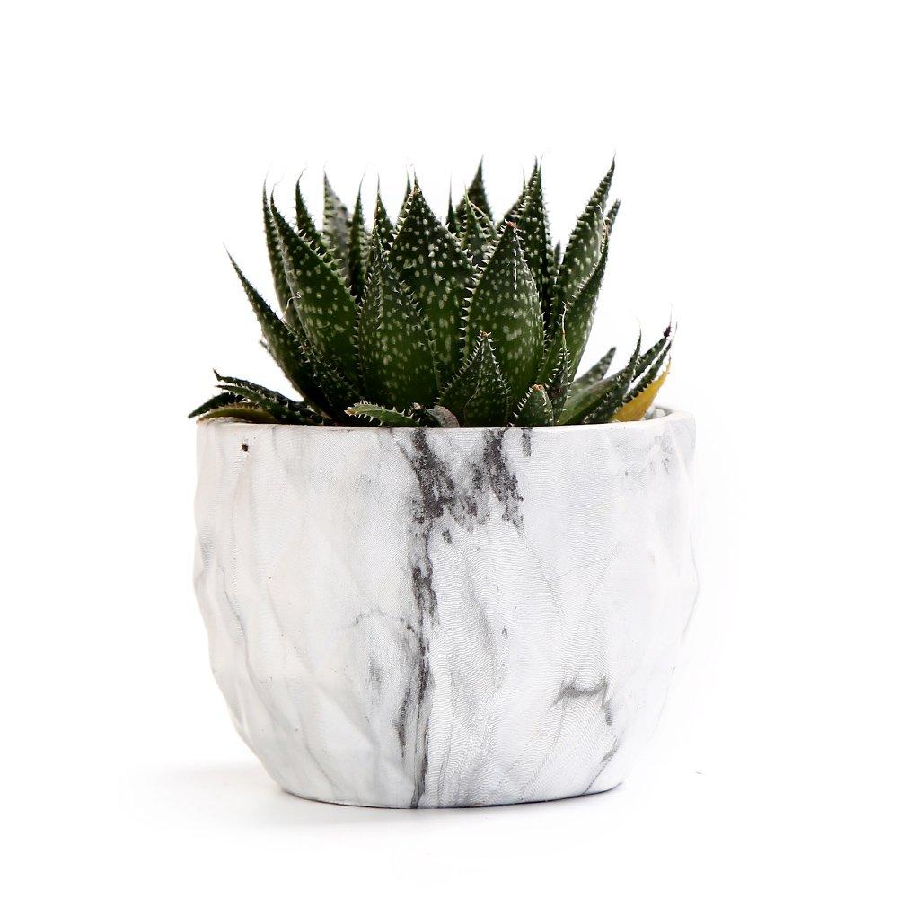 Marbling Ceramic Flower Pot Modern Style Succulent Cactus Bonsai Planter Pots 4