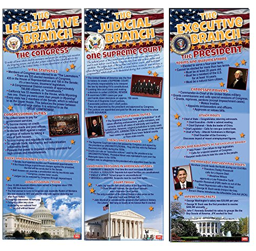Branches of Government ~ Set of 3 Posters