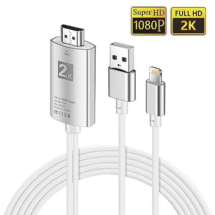 FLYFLY HDMI Cable Adaptador 1080P Digital AV a HDMI Transmitir ...