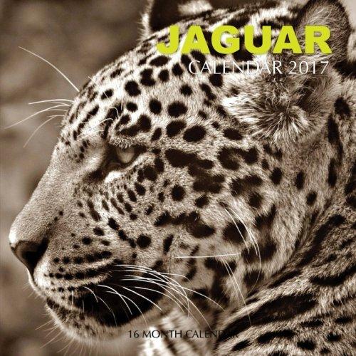 Jaguar Calendar 2017: 16 Month Calendar