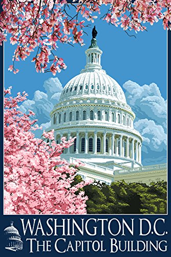 Capitol Building and Cherry Blossoms - Washington DC (24x36 Giclee Gallery Print, Wall Decor Travel Poster)