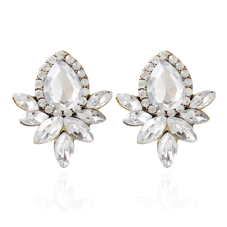 b4b5fe4216e5 Caliente de la venta Dana Carrie Adornos de oreja y elegante en blanco y  negro brillo