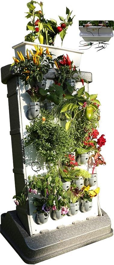 i3-Benjamin Pro-Kit Incl. Auto irrigación jardín Vertical: Amazon.es: Jardín