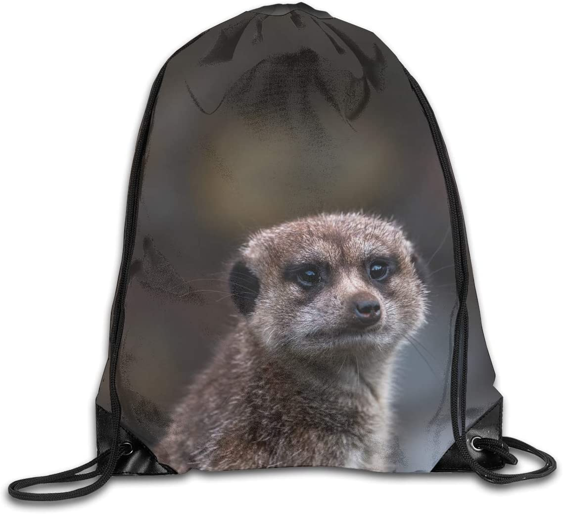 CoolStuff Travel Shoe Bags,Wild Animal Drawstring Backpack Hiking Climbing Gym Bag,Large Big Durable Reusable Polyester Footwear Protection