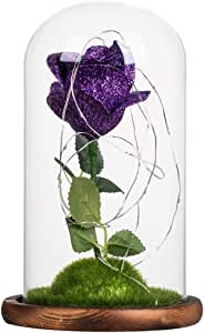 Uonlytech Foil Rose in Glass Dome with Led Lights DIY Romantic Valentine's Day Festival Gifts (Dark Purple)