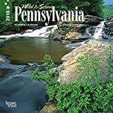 Pennsylvania, Wild & Scenic 2018 7 x 7 Inch Monthly Mini Wall Calendar, USA United States of America Northeast State Nature (Multilingual Edition)
