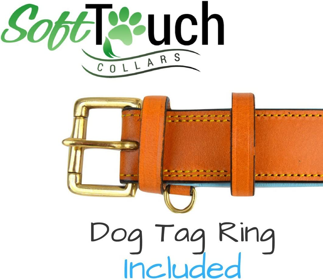 Soft Touch Collars Padded for Comfort with Genuine Real Leather Best for Large Male or Female Dogs, Black Leather Dog Collar