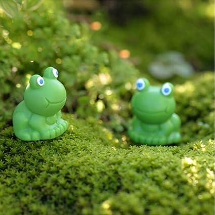 Amazon Com Zamtac 1pcs Micro Landscape Terrarium Figurines