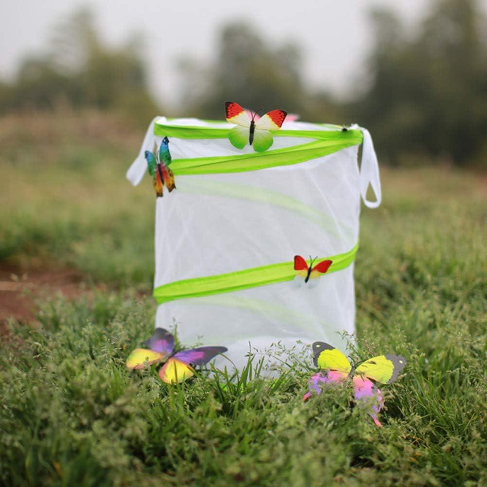 S: 14cm x 15cm Leijing Cage /à Papillons et Insectes Filet Pliable Habitat Terrarium Pop-up de Jardin pour Observations///Élevage