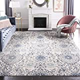 Safavieh Madison Collection MAD600C Cream and Light Grey Bohemian Chic Paisley Area Rug (9' x 12')