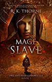 Mage Slave (The Enslaved Chronicles Book 1)