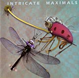 Various: Intricate Maximals [CD]