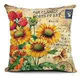 Decorative Pillow Cover - 1 X 18 X 18