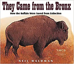 They Came From The Bronx How The Buffalo Were Saved From Extinction