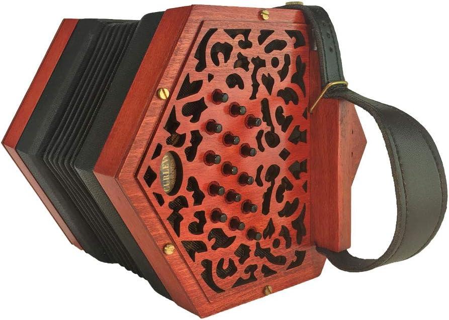 30 botones Curlew Anglo Concertina acordeón con estuche rígido: Amazon.es: Instrumentos musicales