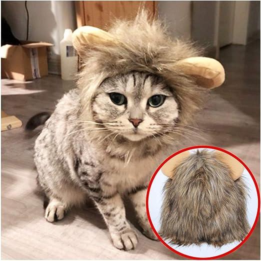Ropa para Mascotas,Disfraz De Halloween para Perro Gato,Peluca ...