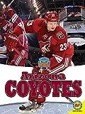Arizona Coyotes (Inside the NHL)