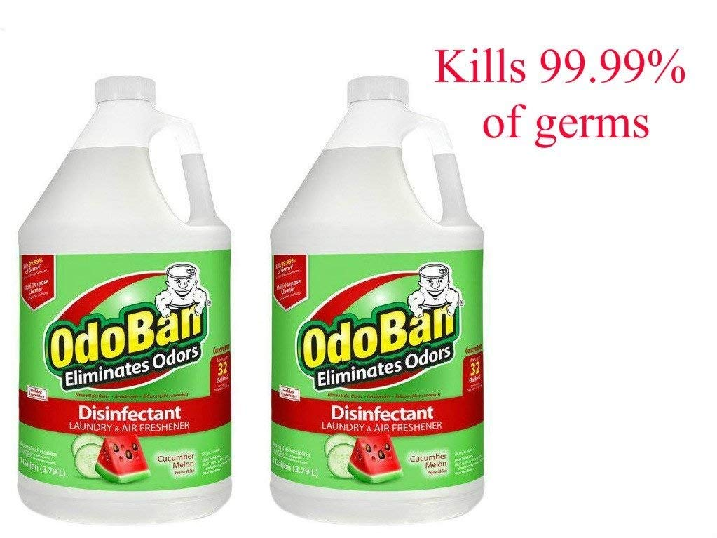 OdoBan 1 Gal Concentrate 2-Pack, Cucumber Melon Scent - Odor Eliminator, Disinfectant, Flood Fire Water Restoration