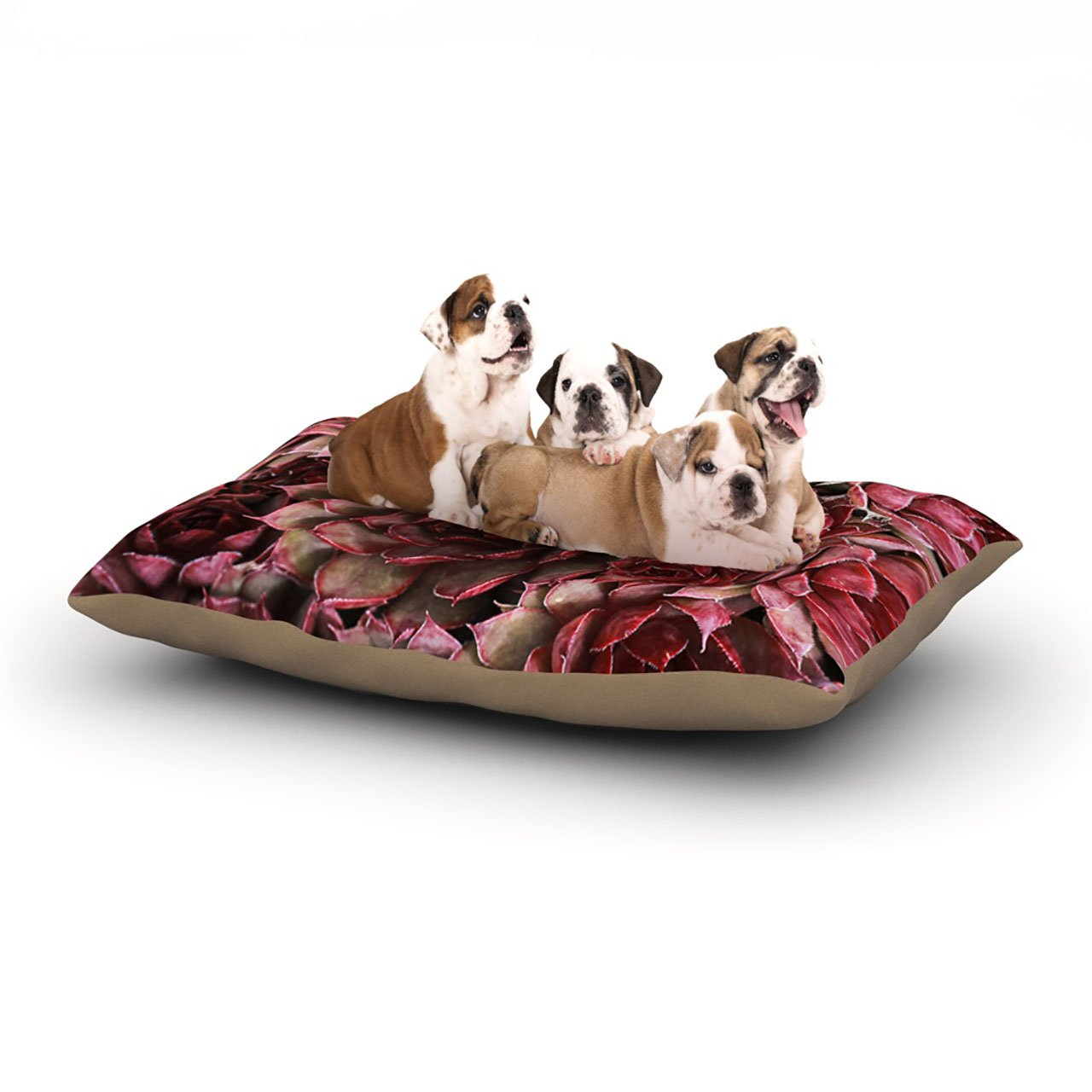 Large 30\ Kess InHouse Debbra Obertanec Red Succulents  Fleece Dog Bed, 30 by 40-Inch, Maroon