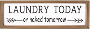 VILIGHT Laundry Room Decor Rustic Farmhouse Sign Wall Decoration Funny Housewarming Gifts - 16x5 Inches