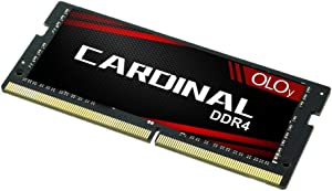 OLOy DDR4 RAM 16GB (1x16GB) 2400 MHz CL17 1.2V 260-Pin Laptop Gaming SODIMM for Intel (MD4S162417IZSC)