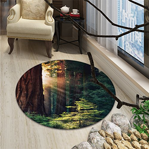 National Parks Round Area Rug Carpet Morning Sunlight in Wilderness Yosemite Sierra Nevada United States NatureOriental Floor and Carpets Green Brown (Coffee Table Outdoor Sierra)