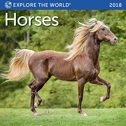 Horses Mini Wall Calendar 2018