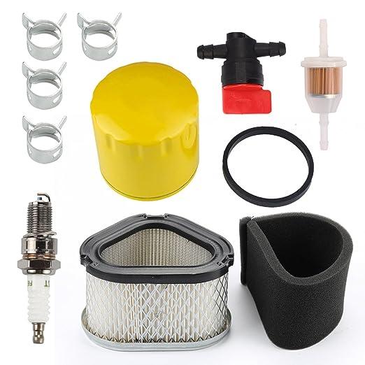 Panari Filtro de aire + filtro de aceite Tune Up Kit para Cub ...
