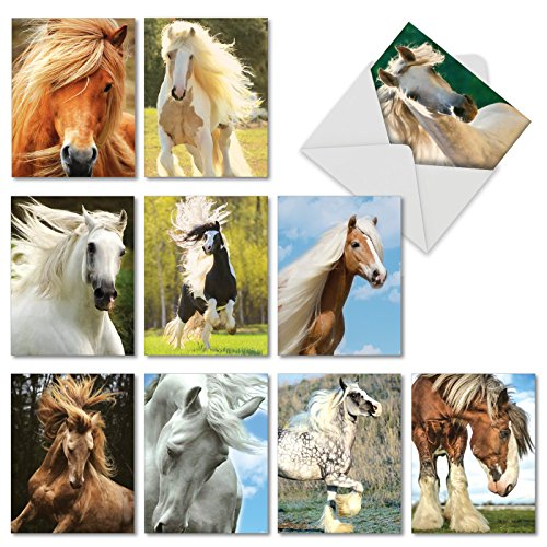 "10 All-Occasion Note Cards with Envelopes (4"" x 5 ¼""), Assorted 'Magnificent Manes' Stationery Featuring Majestic Horses, Great for Thank Yous, Weddings, Birthdays - NobleWorks #M4601OCB-B1x10 -"