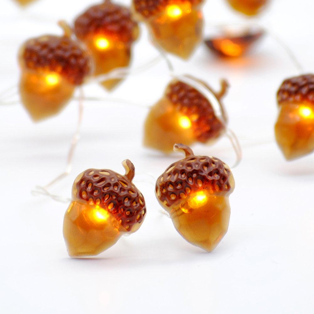 Impress Life Decorative Lights, Acorn Lights String 10 ft Copper Wire 40 LEDs New Battery-Powered for Ice Age, Camping, Wedding, Birthday Parties, Bedroom Decorations with Dimmable Remote & Timer