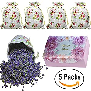 QUIET 100% Best All Natural Lavender Scented Sachets, Moth Protection for Drawers and Closets, Clothes Storage, Shoes Cabinet, Pillow , DIY etc, Fresh and Lasting, 1 Box 5 Bags