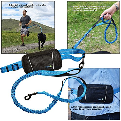 Waggin Tails Hands Free Bungee Dog Leash - Smart 3-in-1 Design For Running, Hiking, or Walking with Durable Dual Handles, SmartPhone Pouch, Reflective Stitching, 4FT Length for Medium to XLarge (Extra Smart Key)