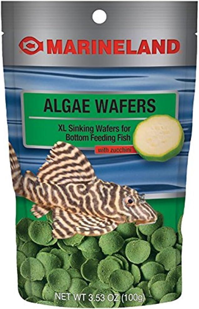 AQUARIA Food Prem Algae Wafer 3.5Z