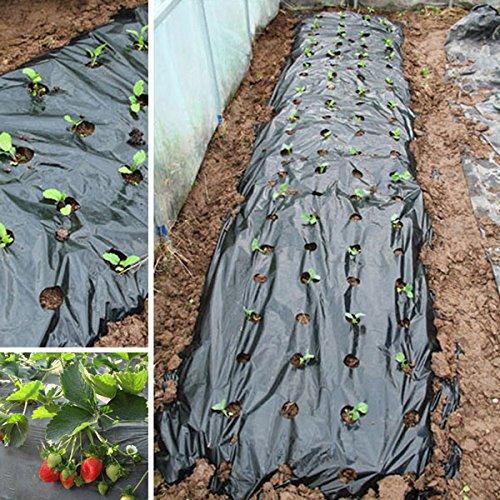Punching Bio-degradable Black Mulch Film Garden Weeding Control Film Mulching (Weed Control Film)