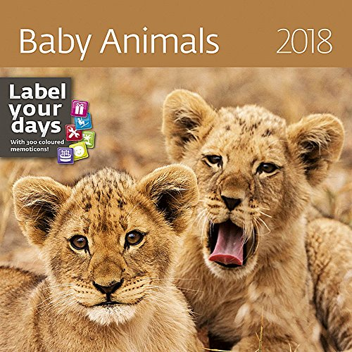Baby Wild Animals Calendar - 2018 Calendar