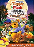 Best Disney Friends On Dvds - My Friends Tigger & Pooh: Hundred Acre Wood Review