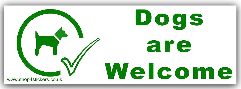 1 x perros son welcome-green/blanco, señ al de aviso de advertencia de adhesivo de perro, puede, come, en, externo, cuidado, SER CONSCIENTE, mascota, Animal, tienda, Stall señal de aviso de advertencia de adhesivo de perro Platinum Place
