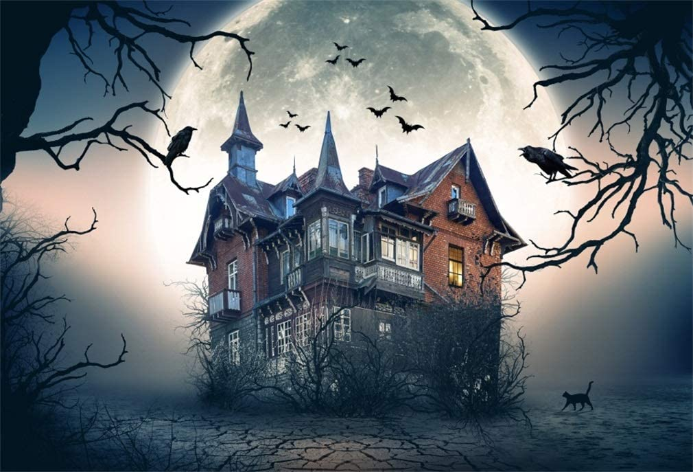 Yongfoto 3x2m Vinyl Foto Hintergrund Halloween Haunted Kamera