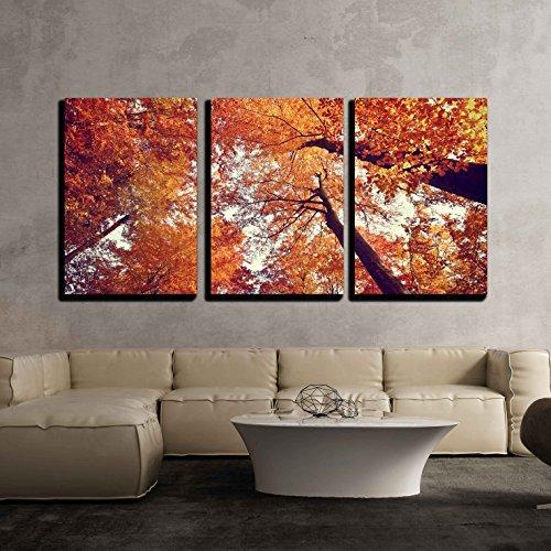 Beautiful Autumn Fall Forest Scene x3 Panels