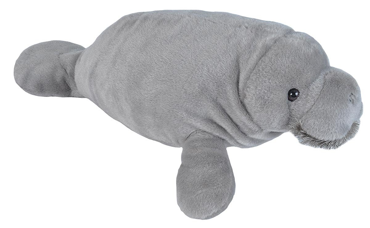 Amazon.com: Wild Republic Cuddlekins, Manatee Plush, Stuffed Animal, Plush Toy, Gifts for Kids, 17 inches: Toys & Games