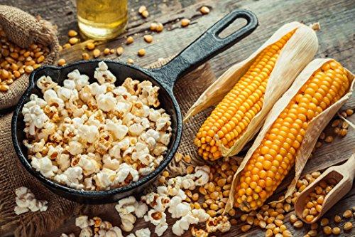 Popcorn Party | BEST SELLING POPCORN SEASONING Variety 10 Pack | Saled Caramel | White Cheddar | Taco | Apple Pie | Nacho Cheese | Sea Salt & Vinegar | Cinnamon Sugar | Dill Pickle | etc. by June Moon Spice Company (Image #3)
