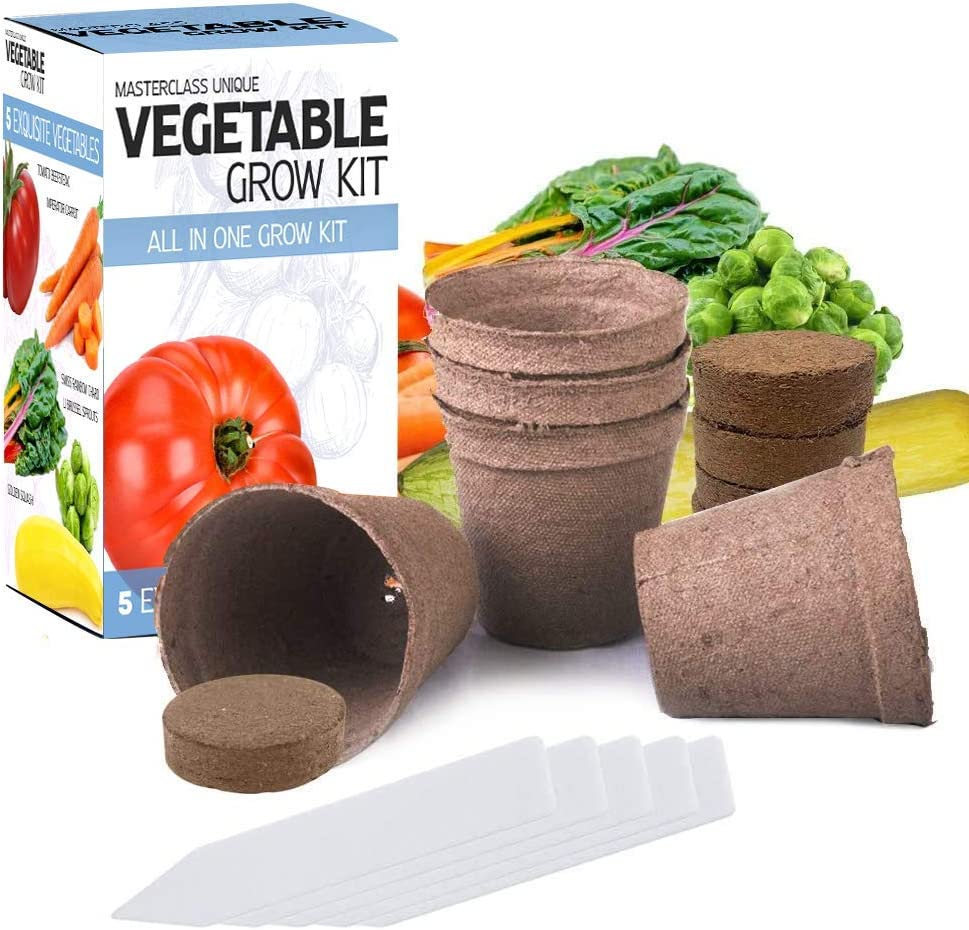 Masterclass Vegetable Grow Kit 5 Extraordinary Vegetables to Grow -Everything You Need to Start Growing in one Box! Home Grow Kit