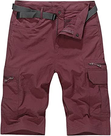Mens Outdoor Water-Resistant Quick Dry Cargo Shorts